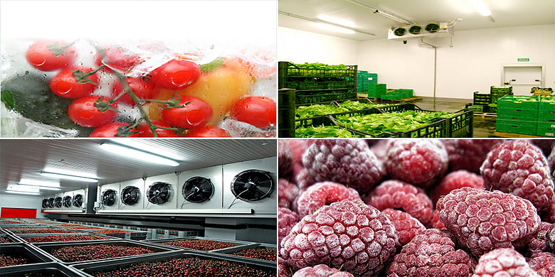 Fruit & Vegetable Cold Storage