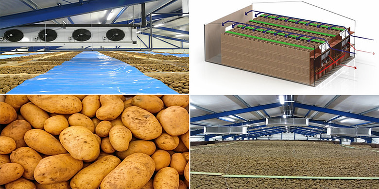 Potato & Onion Cold Storage