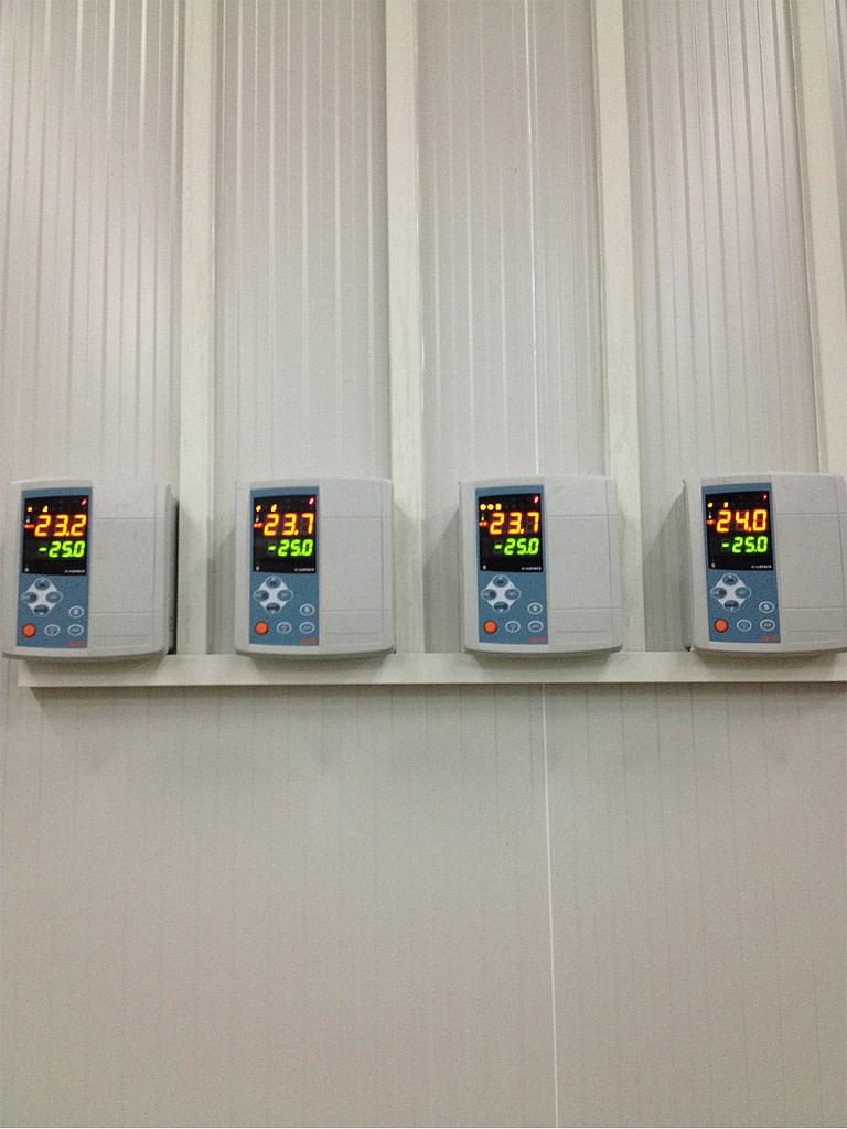 Netherlands Freezer Room Project