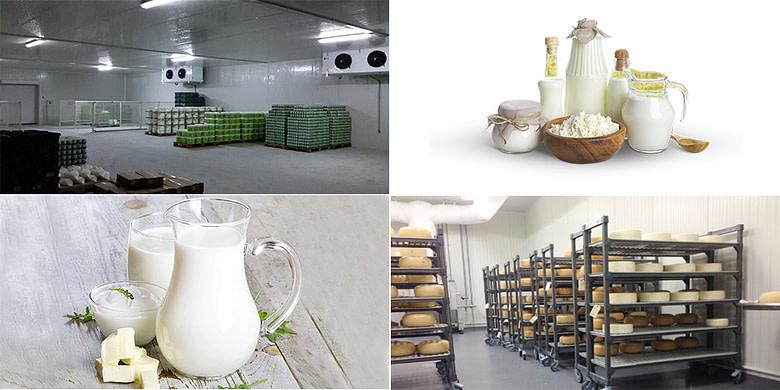 Milk & Dairy Cold Storage Solutions