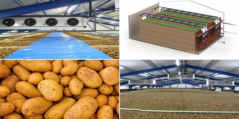 Potato & Onion Cold Storage